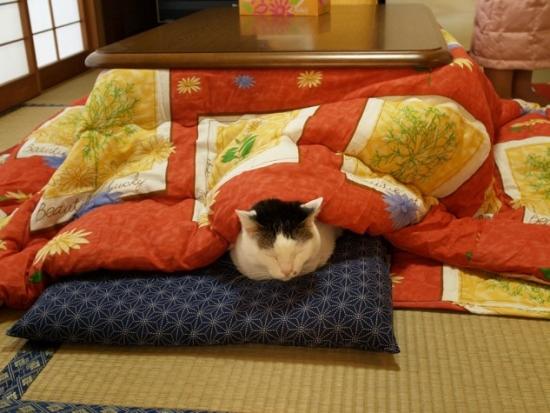 Mobilier relaxare cu incalzire Kotatsu