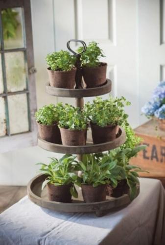 Aranjament cu ghivece mici cu plante aromatice