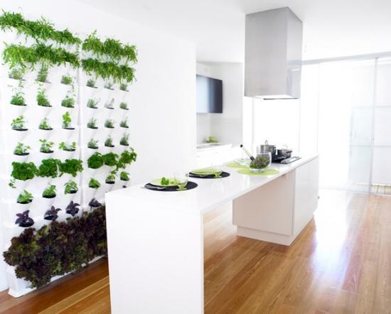 Bucatarie moderna cu perete cu gradina verticala