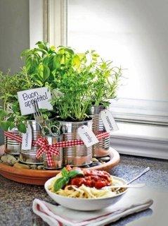 Plante aromatice plantate in cutii de conserva