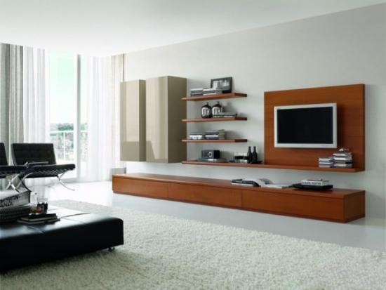 Design perete televizor living