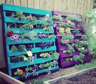 Gradini verticale cu plante aromatice