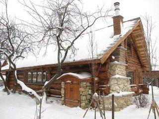 Cabana fara etaj din lemn si piatra