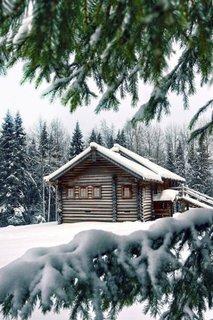 Vis de iarna
