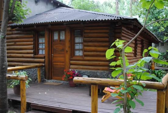 Casa mica cu design rustic de lemn