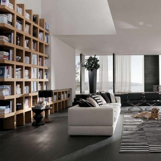Living mare cu perete cu biblioteca din lemn masiv