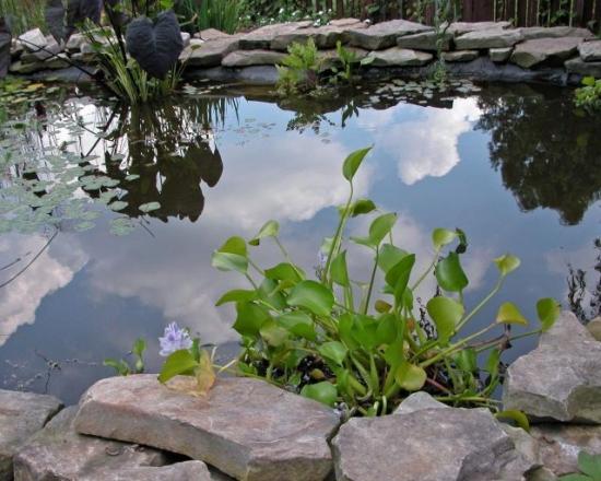 Fantana exterioara  mare cu pietre si flori