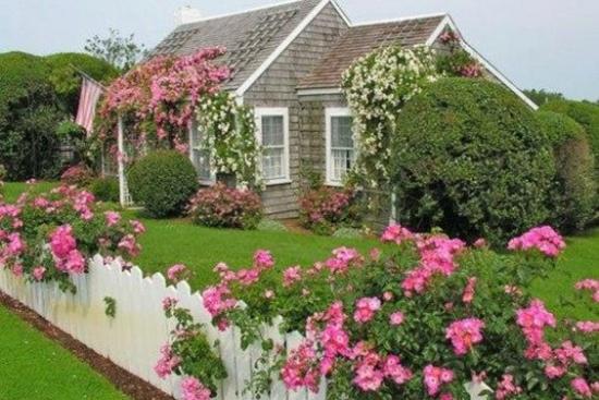 Gard uluca lemn alb cu trandafiri