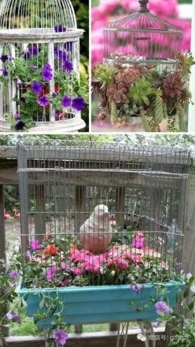 Colivii transformate in aranjamente florale de gradina