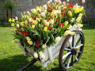 Caruta cu flori decor rustic gradina