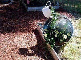 Idei creative plantare flori in gradina cu creare de iluzii optice
