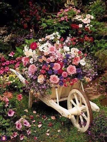 Roaba din lemn pentru flori
