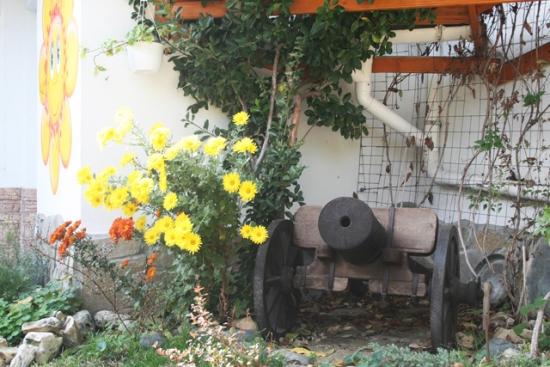 Vechi tun decoratiune inedita pentru curte