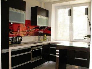 Mobila neagra de bucatarie si perete rosu