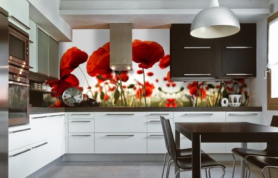 Sticla colorata pentru peretii bucatariei maci rosii
