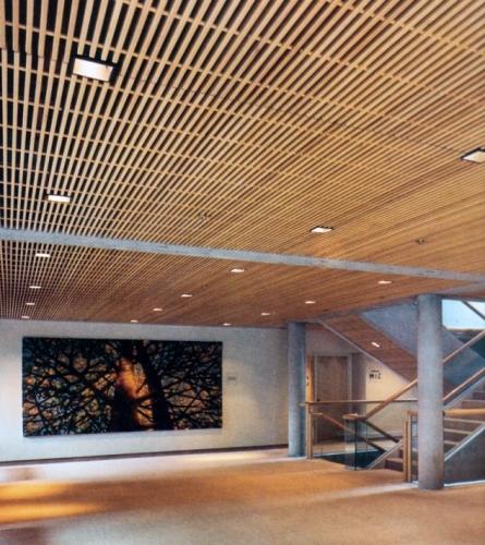 Tavan placat cu panou decorativ din lemn