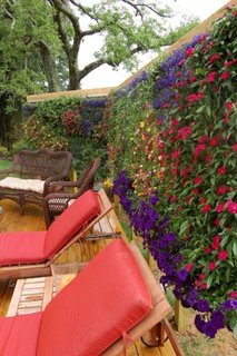 Gard decorat cu flori