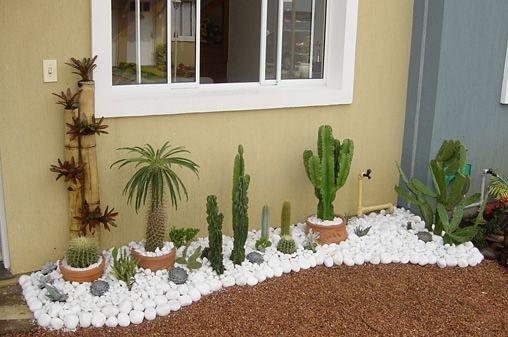 Amenajare gradina mica cu cactusi