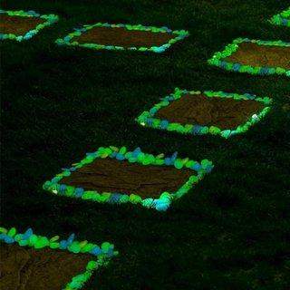 Pietre fosforescente alee gradina