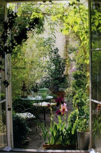 Balcon plin cu plante rezistente la soare