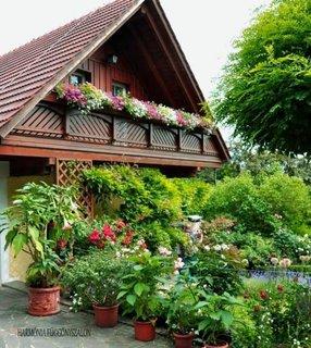 Idee de decorare a balustradei de a balcon cu flori curgatoare