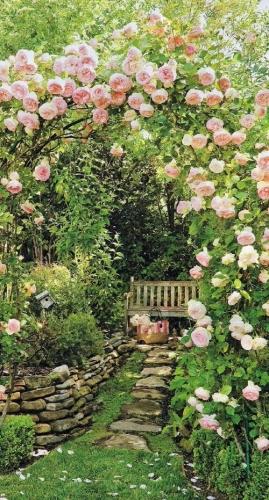 Mic colt de rai cu trandafiri roz