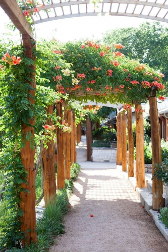 Pergola acoperita de flori de trambita portocalie