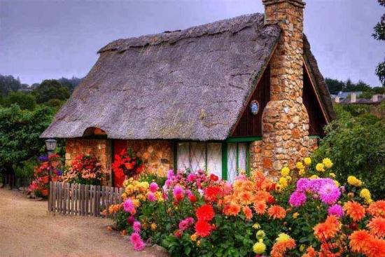 Casuta cu flori in gradina din fata