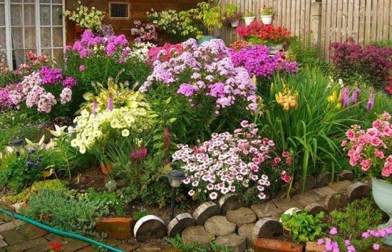 Gradina amenajata cu flori colorate de vara