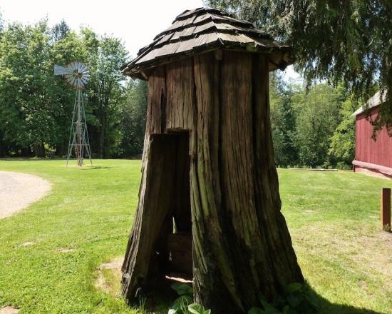 Toaleta rustica