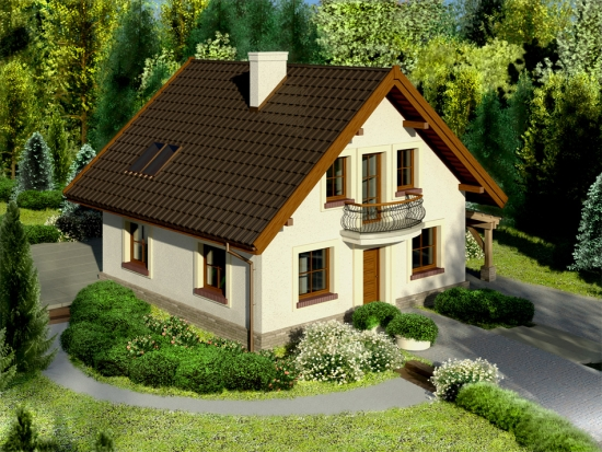 Proiect casa de 100 mp - o locuinta economica si functionala
