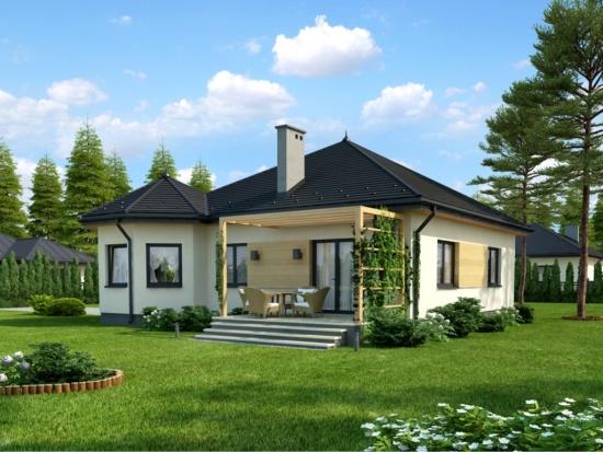 Model casa fara etaj cu terasa