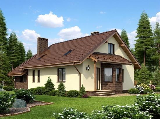 Casa cu acoperis maro inchis