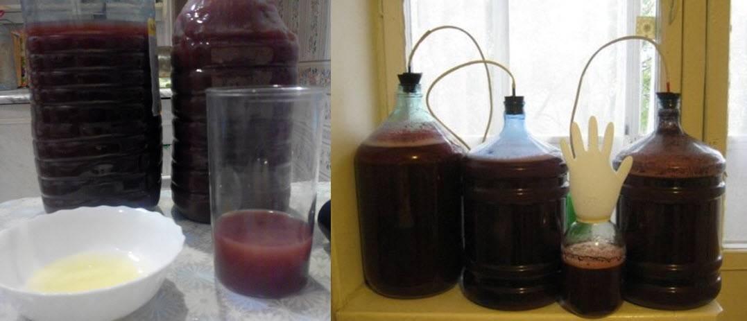 Cum se face vinul de casa - Retete, Preparare, Fermentare, Tratare + 7 secrete pentru o reusita sigura