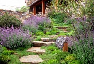 Trepte din piatra bordurate de lavanda