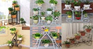Idei de suporti pentru florile de interior.jpg
