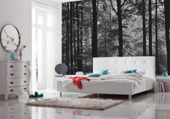 Imagine murala alb negru in dormitor
