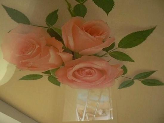Tavan extensibil cu trandafiri
