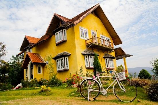 Cum sa alegeti tencuiala decorativa potrivita pentru casa