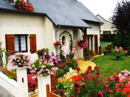Gradina amenajata cu trandafiri si alte flori colorate